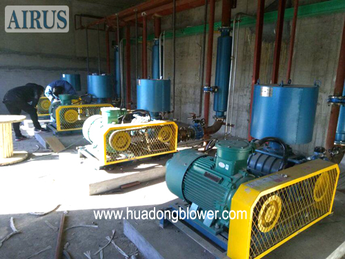 HDSR 150 HB roots blowers for medicine factory