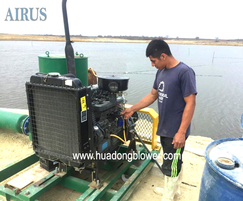 HDSR series 3 lobe root blower with diesel engine for shrimp farming aeration