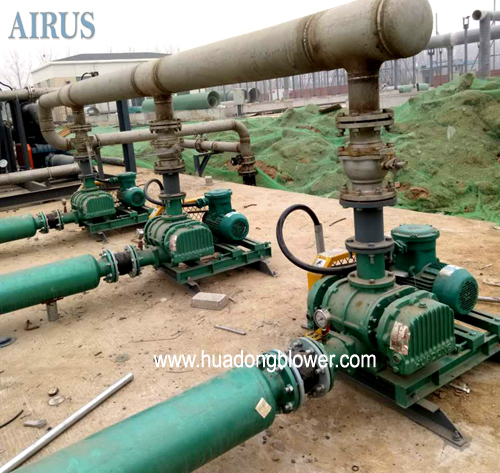 HDSR series tri lobe roots blower for coal gas