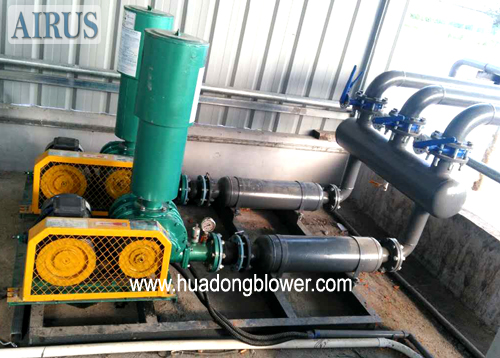 HDSR Series Roots Air Blower For Small Size Waste water Treatment System