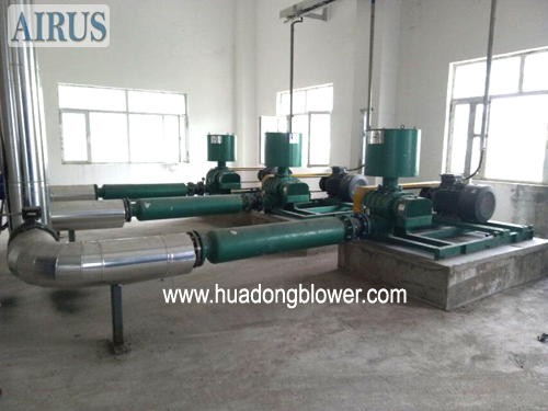 HDSR Series Rotary Lobe Blowers In Chemical Factory