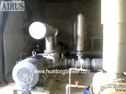 HDSR Series Roots Blower For Flue Gas Denitrification In Thermal Power Plant