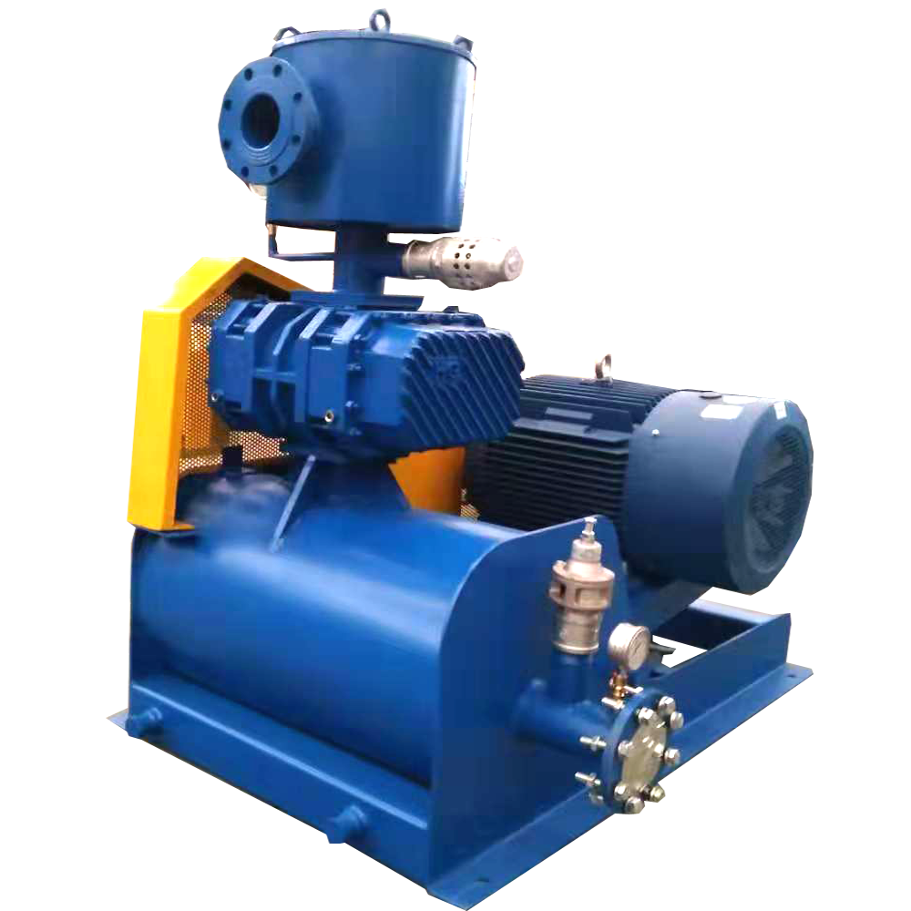 HG-V series roots type vacuum pump blower
